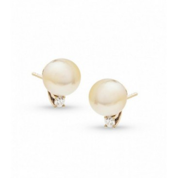 Ear tops 14kt Yellow gold set with golden South Sea pearls and each one diamond